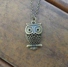 Super Cute owl necklace made by Pretty Little spaces. Only $8.10!