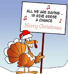 funny christmas pictures funny christmas turkey funny christmas quotes christmas humor funny christmas