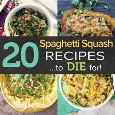 Spaghetti-Squash-Recipes...not all these recipes may be for weight loss but could give ideas how to make this low calorie food more appetizing | clic for the Recipes | clic for the Recipes