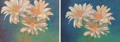 Colored pencil flowers raw and blended