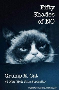 This particular book (the real version, librarians know what I'm talking about!) keeps flying off of our shelf.  We own 9 copies and 8 are currently out.  But, I read this trilogy this summer and just don't understand it- it's really not good writing.  Grumpy Cat captures my thoughts exactly.