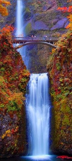 Oregon is an amazing place to visit in the autumn, as the leaves turn brilliant shades of red, orange, and yellow. This photo of the famous bridge across Multnomah Falls shows how beautiful Oregon can be in the autumn.
