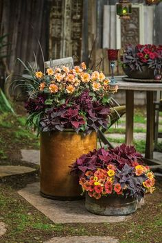 Think outside of the traditional garden container, and repurpose items that have. - Think outside of the traditional garden container, and repurpose items that have character and text - Container Flowers, Container Plants, Fall Container Gardening, Plant Design, Garden Design, Fountain Grass, Fall Containers, Design Jardin, Fall Planters
