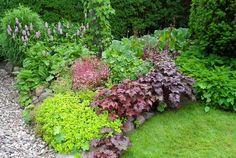 Gifts For The Outdoor Enthusiastics Beautiful Flowers Garden, Beautiful Gardens, Rustic Gardens, Outdoor Gardens, Garden Gadgets, Heuchera, Garden Living, Garden Landscape Design, Shade Garden