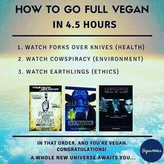 How to go full vegan in 4,5 hours....
