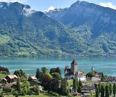 Switzerland is a land of awe-inspiring scenery and epic natural elegance. Home to some of the most attractive villages and towns in Europe, Swiss towns are the very definition of picture-perfect. It is a true bucket-list destination, from snow-capped mountains and pristine lakes to fairytale castles and flower meadows. Here are the eight most charming […] The post 8 most charming villages in Switzerland appeared first on A Luxury Travel Blog. Fairytale Castle, Bucket List Destinations, Luxury Travel, Switzerland, Fairy Tales, Scenery, Landscape, Fairytail, Adventure Movies