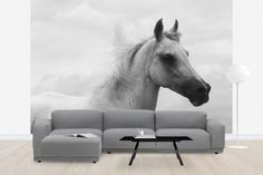 Living-Room-Ideas-with-Horse-Photo-Wallpaper.jpg (700×468)
