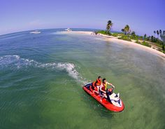 Starfish Pt. - Cayman Private Charters