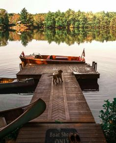 Nadire Atas Lakeside Living A dock on the lake to show how everyone needs their own little slice of heaven. Beautiful Homes, Beautiful Places, Beautiful Beautiful, House Beautiful, Beautiful Pictures, Haus Am See, Cabin In The Woods, Cabin On The Lake, Lake Cabins