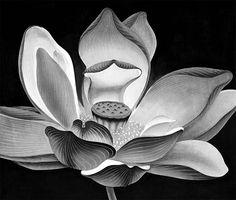Chen QI, water-based Ink Wood Block Print