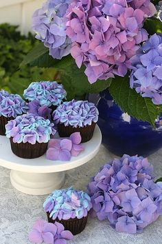 """ Hydrangea"" Cup Cakes Check out our baking recipes http://www.naturesbasket.co.in/recipes-bakes-speciality.html"