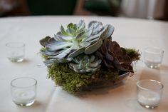 Succulent centerpieces with votives