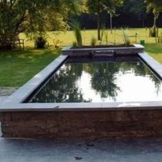 Koi Ponds, Ponds Backyard, Pond Design, Pond Ideas, Water Gardens, Town House, Aquarium, Green, Plants
