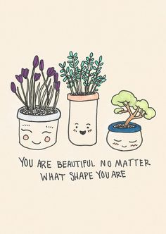 you are beautiful no matter what shape you are