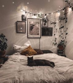 Room Ideas Bedroom, Home Bedroom, Master Bedroom, Bedroom Designs, Decor Room, Cozy Bedroom Decor, Wall Decor, Nature Bedroom, Bedroom Inspo