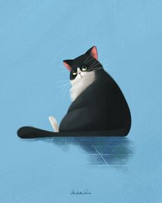 cat illustration Spicchio the cat on Behance - cat Art And Illustration, Cat Illustrations, Fat Cats, Cats And Kittens, Cat Anime, Anime Art, Cat Drawing, Crazy Cats, Animal Drawings