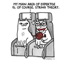 Science and cats :D