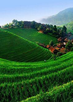 Small village, big rice fields - Longji, China