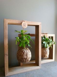 Greenhaus Projects Botanical Decor & Furniture Geelong This type of concept for the shower room wall facing living area, custom made with possibly black frame recessed into timber shiplap cladding wall, using succulents that can handle the heat House Plants Decor, Plant Decor, Indoor Garden, Indoor Plants, Decoration Plante, Diy Decoration, Decorations, Creation Deco, Hanging Frames