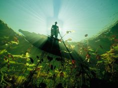 Bushman, Botswana Photograph by David Doubilet, National Geographic Sunlight and shadows highlight a river Bushman in a canoe in the Okavango River. When the river swells and floods, it creates an. Under The Water, Under The Sea, National Geographic Society, National Geographic Photos, Underwater Images, Underwater Photographer, Safari, All Nature, Cultural