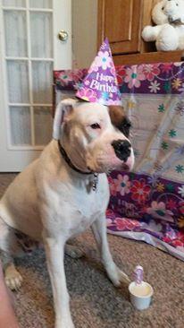 Happy birthday Zoey