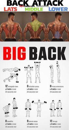 Big Back Workout Dumbbell Back Workout, Back Workout Men, Back Workout At Home, Home Workout Men, Gym Workouts For Men, Gym Workout Chart, Workout Routine For Men, Weight Training Workouts, Gym Workout Tips