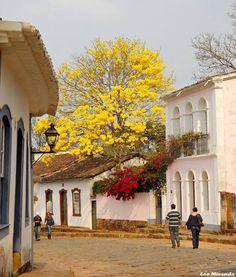 Tiradentes - MG - Brasil Brazil Tourism, Brazil Travel, Beautiful Places To Visit, Wonderful Places, Places To Travel, Places To Go, Flowering Trees, Great View, The Good Place
