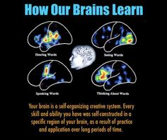 Understanding How Our Brains Learn | Creative by Nature