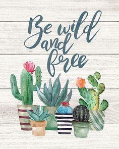 """Stupell Industries 13 in. x 19 in. """"Be Wild And Free Cactus Succulents Watercolor"""" by Jo Moulton Wood Wall Art, Multi-Colored Cactus Quotes, Happy Birthday Signs, Watercolor Walls, Watercolor Sunset, Cactus Decor, Free Art Prints, Wild And Free, Canvas Artwork, Wood Wall Art"""