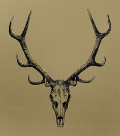 Skull Clip Art, with antlers, Royalty Free, No Credit Required
