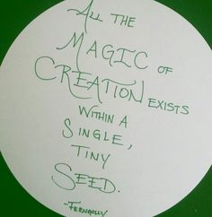 All the #magic of #creation exists within a single, tiny #seed // FERNGULLY FOREVER // #calligraphy #calligrapher #moderncalligraphy #lettering #handlettering #fonts #writing #handwriting #quote #quotes #ink #artemisarthur #justwriteit #keepwriting #keepwritingalive #penmanship #art #artist #wisdom #moviequotes #teamscribebynight #cannabiscommunity #420