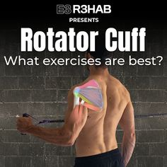 Shoulder Exercises Physical Therapy, Shoulder Rehab Exercises, Frozen Shoulder Exercises, Shoulder Stretches, Shoulder Workout, Shoulder Injuries, Shoulder Muscles, Rotator Cuff Tear Treatment, Rotator Cuff Impingement