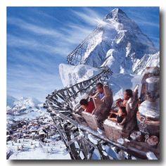 world disney world rockin roller coaster expidition everest space mountain