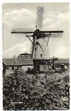 Holland Windmills, Le Moulin, Dutch, Europe, Landscape, History, City, World, Design