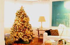 Claudia Reali. Montagem e Desmontagem de árvore de Natal. http://www.clausprime.com.br