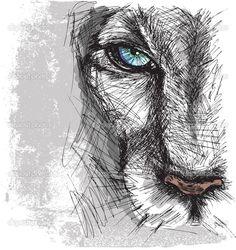 Resultado de imagem para amazing sketches lions
