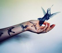 Inspiring picture art, beauty, bird, birds, birds graphic, birds tattoo. Resolution: 400x299 px. Find the picture to your taste!