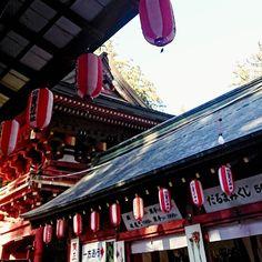いつもの神社に初詣  #だるまくじは等 #おみくじは小吉 #貫前神社 #gunma #tomioka #群馬県 #富岡市
