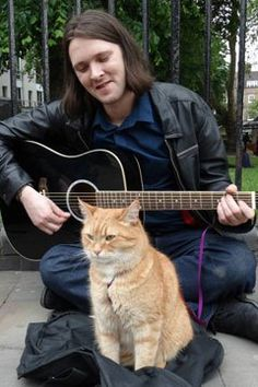 "Meet ""A Street Cat Named Bob"" | TIME.com"