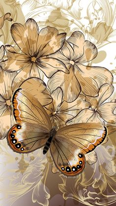 New Wallpaper Android Samsung Gold Ideas Butterfly Wallpaper Iphone, Flower Wallpaper, Wallpaper Backgrounds, Best Wallpapers Android, Pretty Wallpapers, Butterfly Painting, Butterfly Art, Paper Butterflies, Beautiful Butterflies