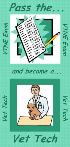 Thinking about a veterinary technician career.  Get some help to pass the vet tech exam. #vtne #vettech #veterinarytechnician