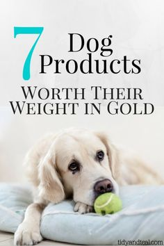 7 Dog Products Worth Their Weight in Gold | Pets | Dog Food | Dog Toys | Grooming | Save Money | Personal Finance | Best Pet Supplies | Smart Money | Family Dog