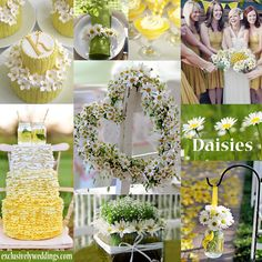 Daisy Wedding Theme -  Daisies create a casual feel and are an especially good choice for rustic and country chic weddings. All of our color-story collages can be found here:  http://pinterest.com/exclusivelywed/wedding-color-stories/ | #exclusivelyweddings
