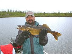 Facts About the Life and Behavior of Walleye