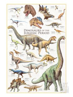 An awesome poster of Dinosaurs from the Jurassic Period! Includes the Stegosaurus, Brachiosaurus, Archaeopteryx, and more! Check out the rest of our amazing selection of Dinosaur posters! Need Poster Mounts. Prehistoric Dinosaurs, Dinosaur Fossils, Dinosaur Art, Prehistoric Creatures, Dinosaur Photo, Dinosaur Light, Dinosaur Pictures, Dinosaur Crafts, Dinosaur Posters