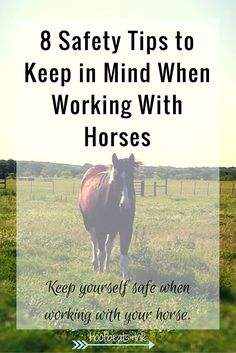 Working with horses is fun, but it can be dangerous. Here are a few easy ways you can avoid putting yourself in a position to get hurt.
