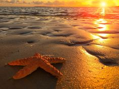 iPhone 6 - Een prachtige zonsondergang @ Portsmouth, Engeland