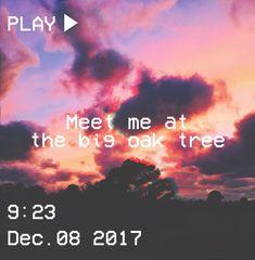M O O N V E I N S 1 0 1    #vhs #aesthetic #sunset #tree