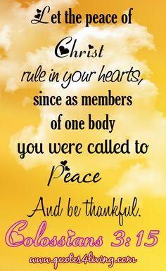 Colossians 3:15 God Loves Me, Jesus Loves, Scripture Verses, Scriptures, Lord, Psalms, Colossians 3, Favorite Bible Verses, Gods Grace