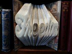 Freedom folded book